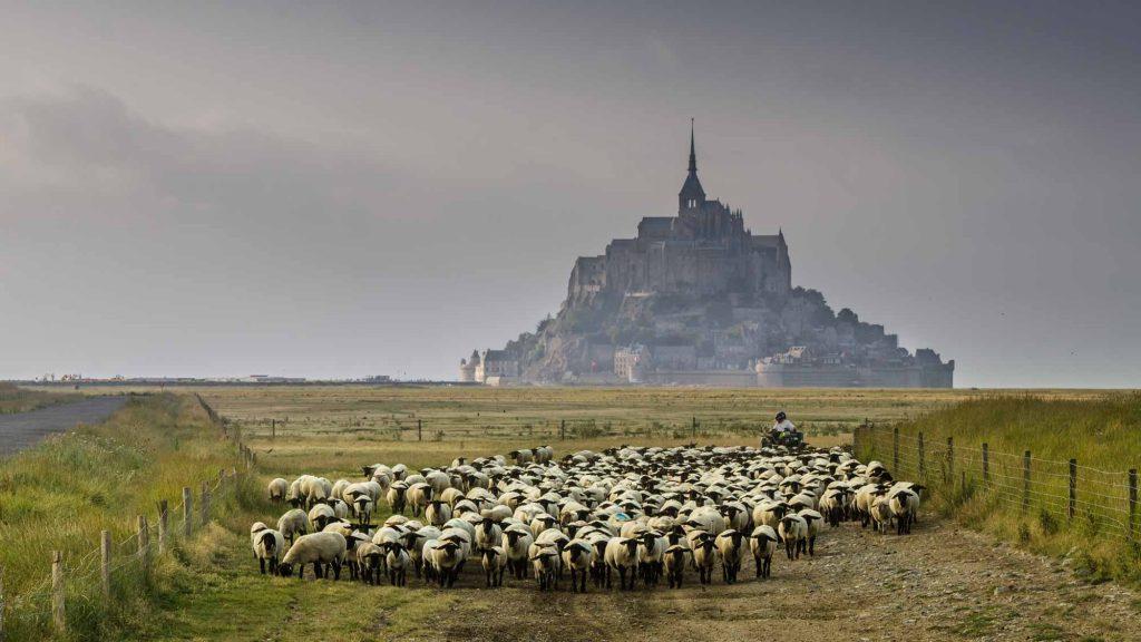 Découvrir la Baie du Mont Saint Michel